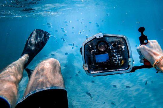 8 Top Ocean Documentaries to Educate and Entertain