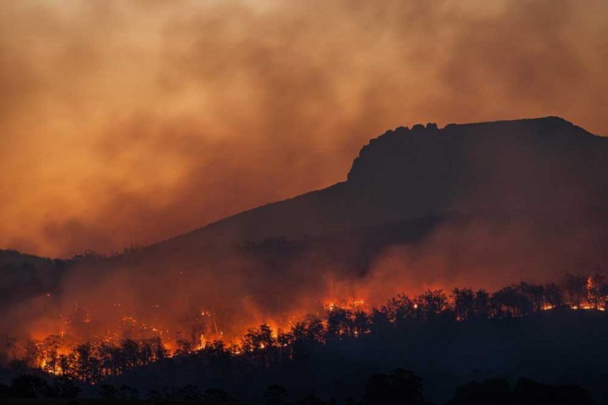 How Wildfires and Climate Change are connected